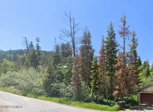 195 Saint Moritz Drive - Photo 1