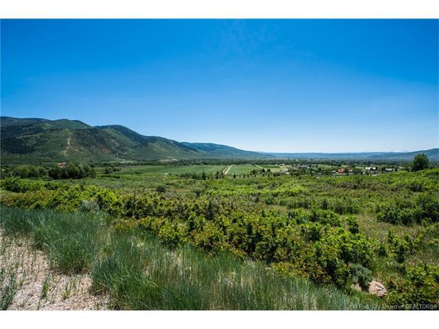 5954 N Maple Ridge Trail, Oakley, UT 84055 (MLS #11701311) :: The Lange Group