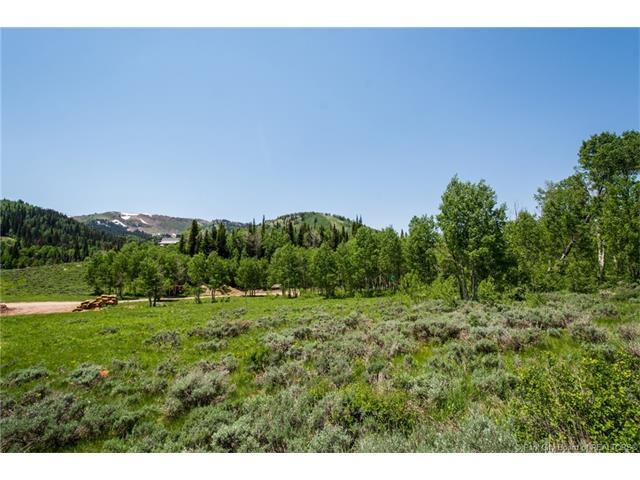 256 White Pine Canyon Road, Park City, UT 84060 (MLS #11702665) :: The Lange Group