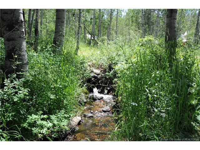 9911 Deer Creek Drive, Heber City, UT 84032 (MLS #11702947) :: High Country Properties