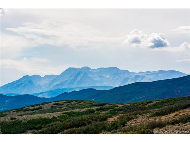 2699 River Meadows Drive, Midway, UT 84049 (MLS #11703752) :: High Country Properties