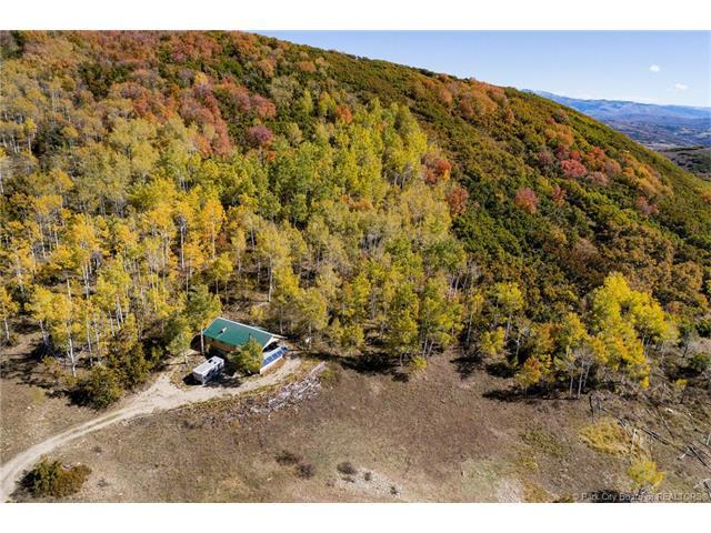 47 Basin Canyon Rd, Park City, UT 84098 (MLS #11704189) :: High Country Properties