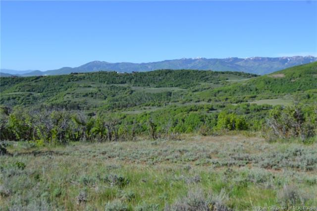 3256 S Forest Meadow Road, Wanship, UT 84017 (MLS #11800241) :: The Lange Group
