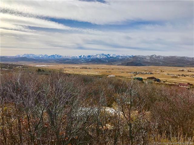 41 Splendor Valley, Kamas, UT 84036 (MLS #11800335) :: Lawson Real Estate Team - Engel & Völkers