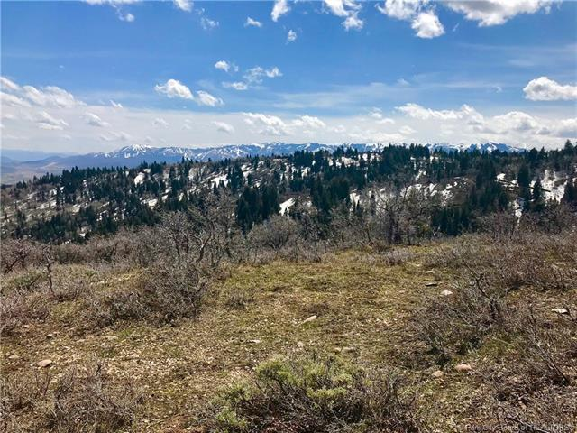 1432 Tollgate Canyon Road, Wanship, UT 84017 (MLS #11803381) :: High Country Properties