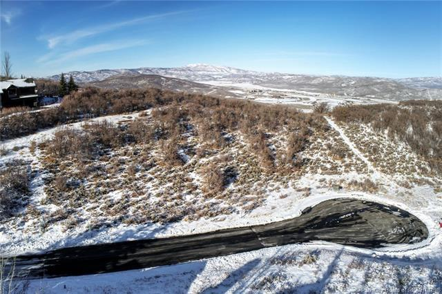 3799 Fox Tail Trail, Park City, UT 84060 (MLS #11803922) :: High Country Properties