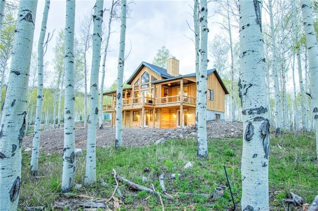 3897 S Blue Spruce Drive, Heber City, UT 84032 (MLS #11804016) :: High Country Properties