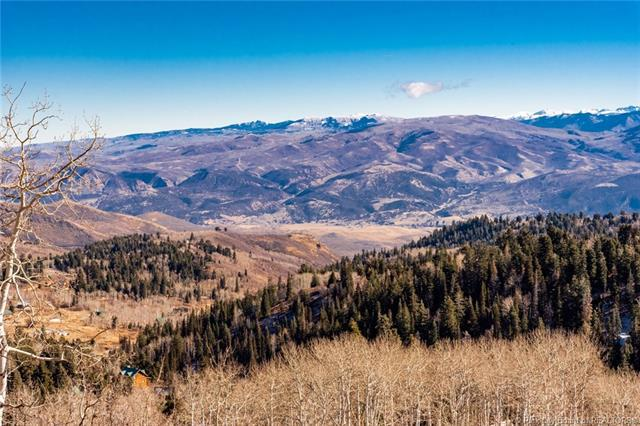 2216 Woodchuck Way, Park City, UT 84017 (MLS #11805610) :: The Lange Group
