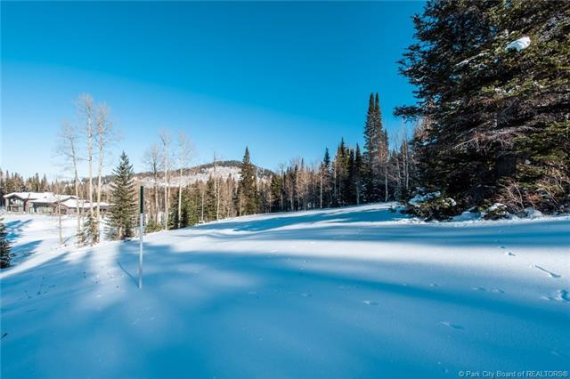 300 White Pine Canyon Road, Park City, UT 84060 (MLS #11806078) :: High Country Properties