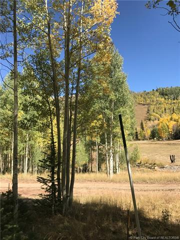 306 White Pine Canyon Road, Park City, UT 84060 (MLS #11806086) :: The Lange Group