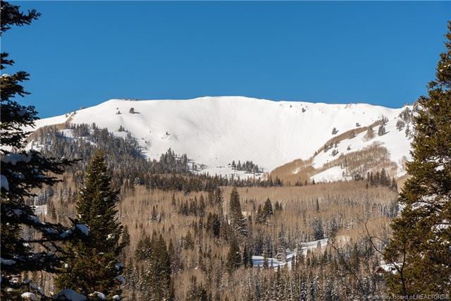 208 White Pine Canyon, Park City, UT 84060 (MLS #11900274) :: High Country Properties