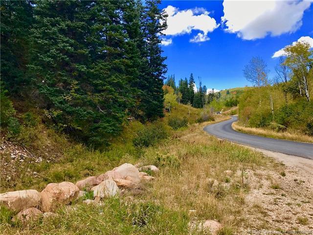 146 Tollgate Canyon Road, Wanship, UT 84017 (MLS #11700584) :: The Lange Group