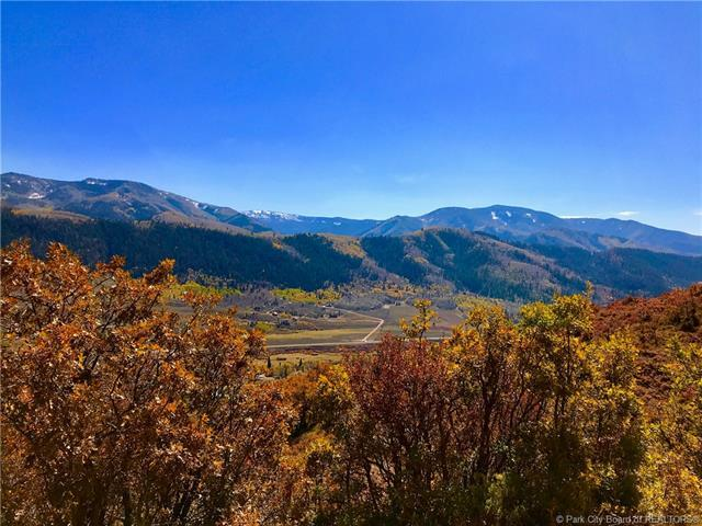 5595 Mountain View Road, Oakley, UT 84055 (MLS #11701491) :: High Country Properties