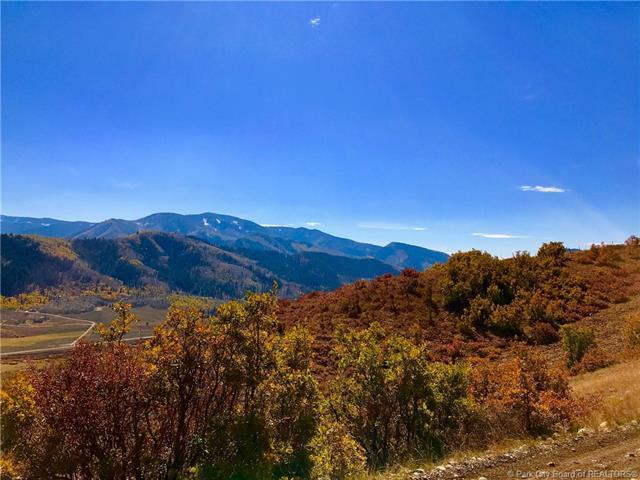 5575 Mountain View Road, Oakley, UT 84055 (MLS #11701492) :: High Country Properties