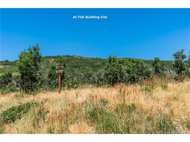 1306 Preserve Drive, Park City, UT 84098 (MLS #11703083) :: High Country Properties
