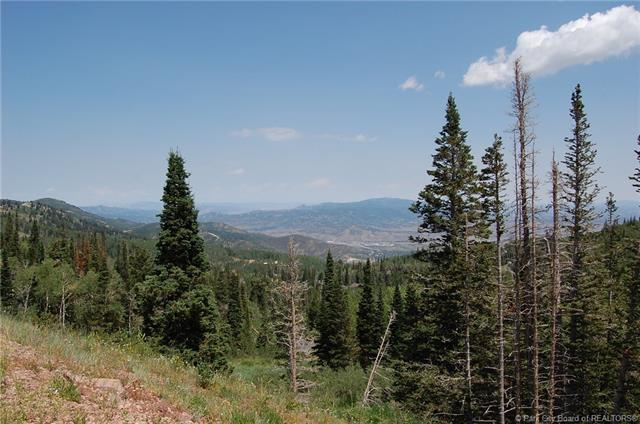 150 White Pine Canyon Road, Park City, UT 84060 (MLS #11802967) :: The Lange Group