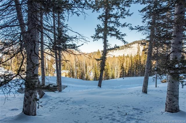 301 White Pine Canyon Road, Park City, UT 84060 (MLS #11806080) :: High Country Properties