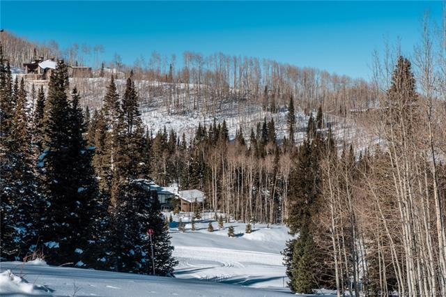 302 White Pine Canyon Road, Park City, UT 84060 (MLS #11806081) :: High Country Properties
