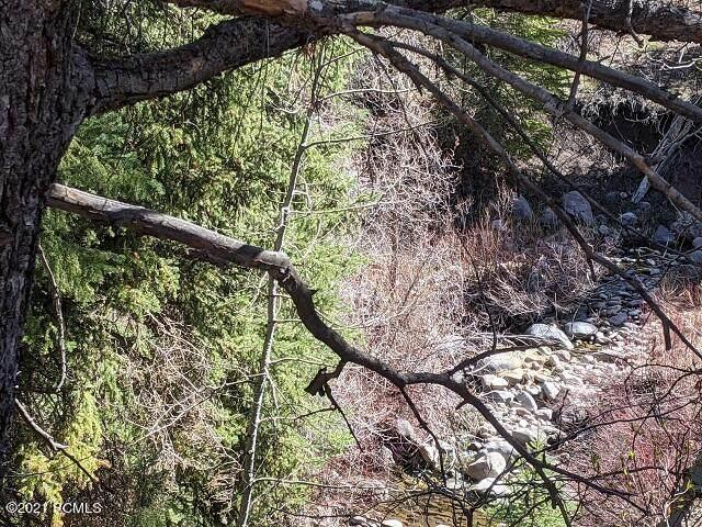 9779 Ridge Pine Road - Photo 1