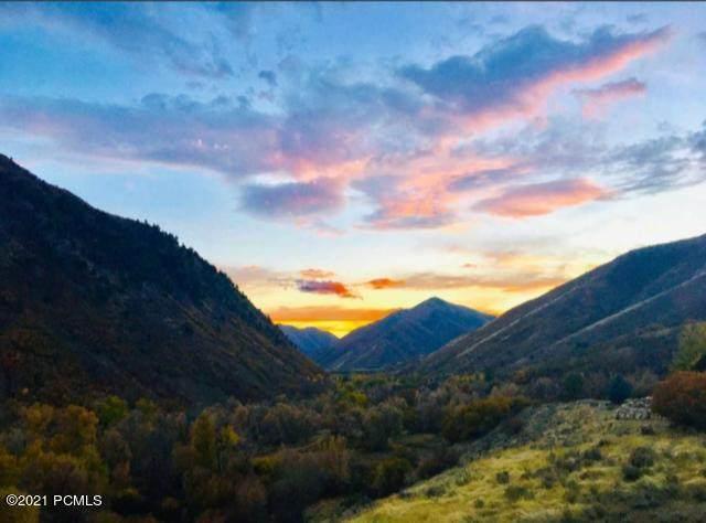 200 Left Fork Hobble Creek Canyon, Springville, UT 84663 (MLS #12102903) :: High Country Properties