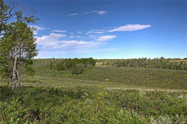 10745 E Silver Spur Lot #73, Woodland, UT 84036 (MLS #11700563) :: The Lange Group
