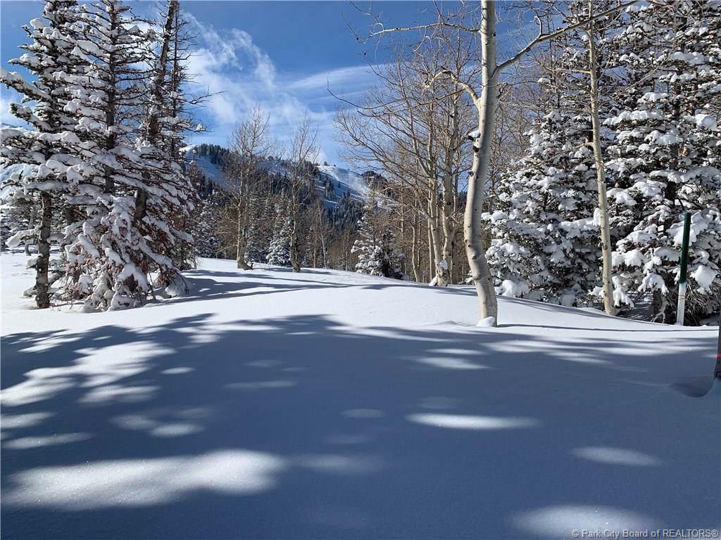 146a White Pine Canyon Road - Photo 1