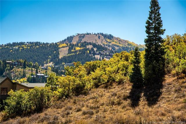 1302 Mellow Mountain Road, Park City, UT 84060 (MLS #11606054) :: Lookout Real Estate Group