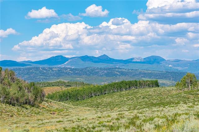 10900 E Silver Spur Circle Lot 70, Woodland, UT 84032 (MLS #11803010) :: The Lange Group