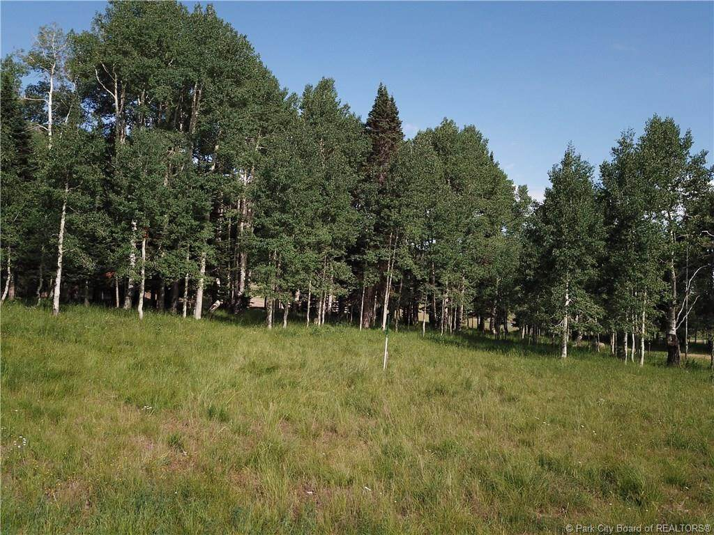 268 White Pine Canyon Road - Photo 1