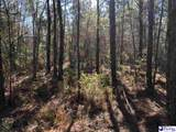 450 acres Journeys End Rd - Photo 24