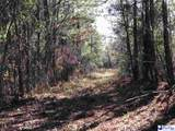 450 acres Journeys End Rd - Photo 28