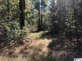 278.87 Acres Howe Springs Road - Photo 5