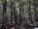 278.87 Acres Howe Springs Road - Photo 6