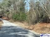 16.40 +/- Tract Paul Hillian Road - Photo 1
