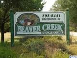 133 Mciver Road - Photo 4
