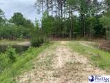 7.10+/- Ac Tract Sycamore Rd - Photo 10