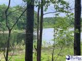 7.10+/- Ac Tract Sycamore Rd - Photo 3