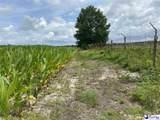 1212 Bobo Newsom Highway - Photo 8