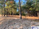 Hunts Mill Road 3.55 Ac Tract - Photo 6