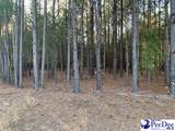 Hunts Mill Road 3.55 Ac Tract - Photo 8