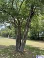 3510 Pine Needles Road - Photo 18