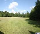 4232 Spears Rd - Photo 13