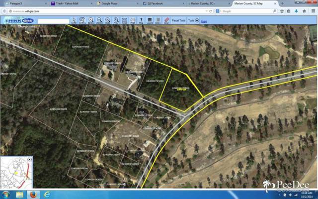 State Road S-34-688, Nichols, SC 29581 (MLS #122043) :: RE/MAX Professionals