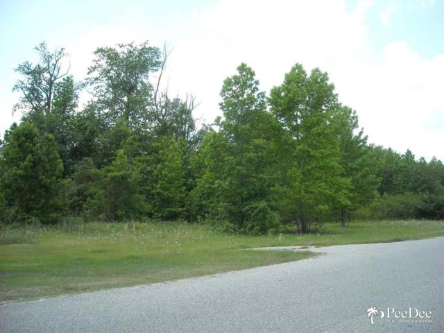 458 Aire Acres, Timmonsville, SC 29161 (MLS #124455) :: RE/MAX Professionals