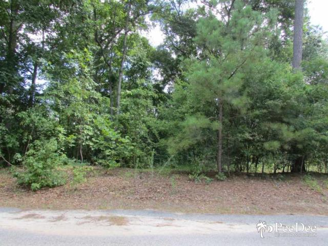 256 Quinby Circle, Florence, SC 29506 (MLS #125417) :: RE/MAX Professionals
