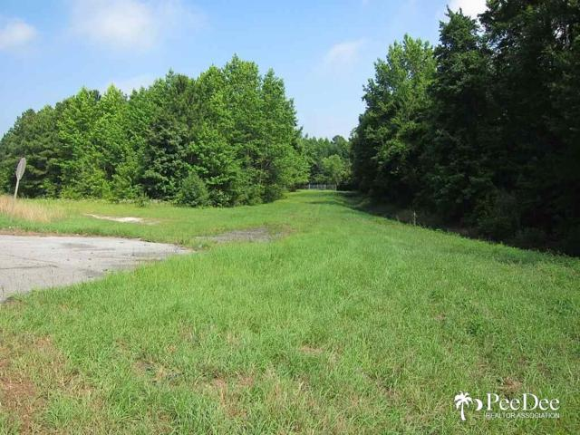 S Governor Williams Highway, Darlington, SC 29532 (MLS #130451) :: RE/MAX Professionals