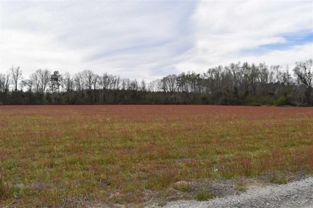 TBD Nita Cain Road, Pamplico, SC 29583 (MLS #131820) :: RE/MAX Professionals