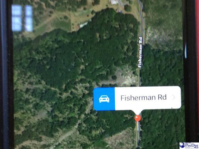 1200 BLOCK Fisherman Road, Lamar, SC 29068 (MLS #133225) :: RE/MAX Professionals