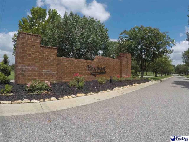 Lot 18 Monterey Drive, Darlington, SC 29532 (MLS #133584) :: RE/MAX Professionals
