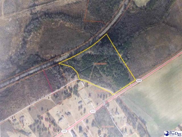 9.8 Acres Highway 177, Wallace, SC 29596 (MLS #133760) :: RE/MAX Professionals